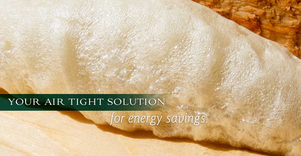 Nautilus Insulation Spray Foam Solutions Home